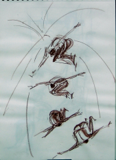 Le Saut (2006) : Craie sur Papier   40 x 30 cm.