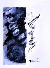 Etat de Conscience (2009) : technique mixte sur Papier   32 x 24 cm.
