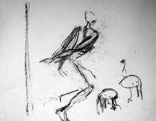 La chasse (e) (2005) : Fusain sur Papier   50 x 65 cm.