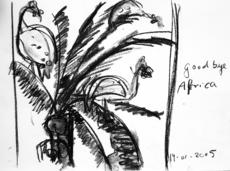 Good bye Africa (2005) : Fusain sur Papier   30 x 41 cm.